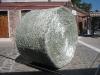 Glaskunst auf der Insel Murano