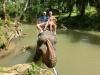 Elefantenreiten durfte natürlich auch nicht fehlen