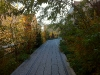 Die Erweiterung des High Line Parks