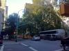 Fußmarsch zur Arbeit: Fifth Avenue
