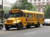 Punkt 24 - So sehen ALLE Schulbusse aus. Selbst für Highschool Studenten