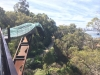 """Tree Top Walk"" im Kings Park"