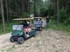Mit Golfmobilen im Wald unterwegs