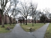 Der Campus von Brown University, eine der prestigeträchtigen Ivy League Universitäten