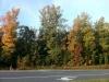 Herbstfarben auf dem Weg zur Arbeit (1/2)